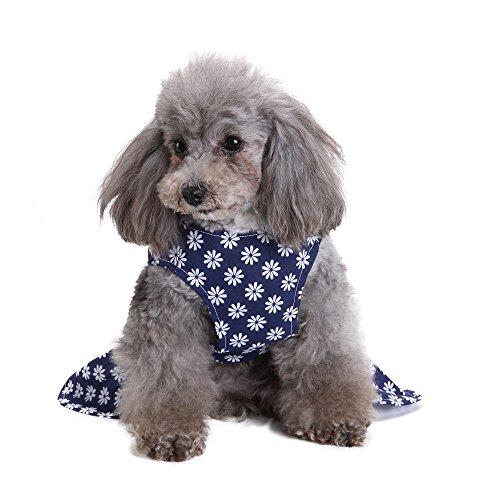 Für Kostüm Dog Menschen Cute - Goldatila Pet Kleidung Pet Rock Blue Frühling und Sommer Cute Dress Dog Kostüme Haustier Kleidung