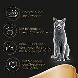 Sheba Katzenfutter Selection in Sauce für ausgewachsene Katzen, Geflügel Variation in Sauce, 1er Pack (1 x 72 x 85 g) - 4