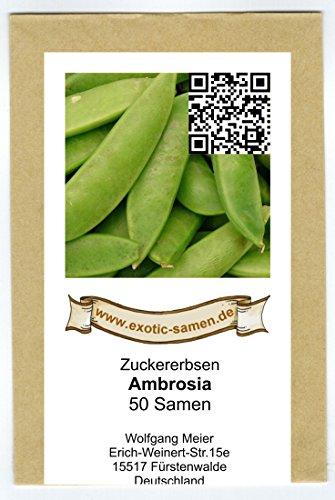 Zuckererbse - Ambrosia - 50 Samen