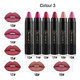 Liquid Lipstick,EUZeo 6Pcs Matt bleistift langlebiger Samt Farbe Zeichenstift-Verfassung Satz des lippenstift (C)