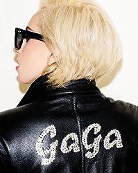 (Lady Gaga) By Richardson, Terry (Author) Hardcover on (11 , 2011)