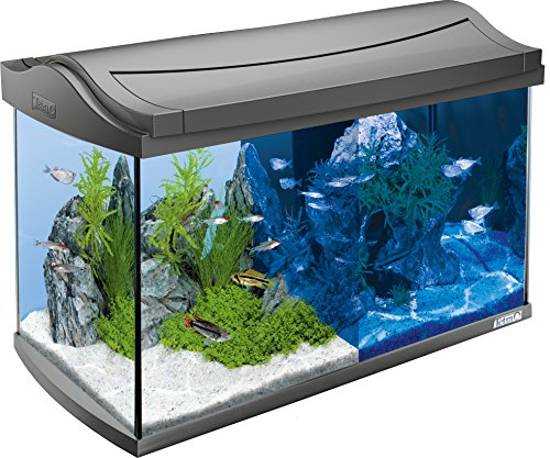 Tetra Acuario AquaArt LED Set completo
