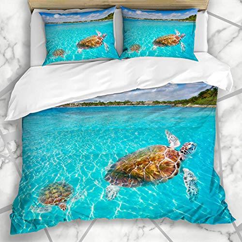 Möbel Turtle Bay (Soefipok Bettwäschesets Blue Mexican Akumal Beach Turtles Reiseziel Riviera Maya America American Bay Design Mikrofaserbettwäsche mit 2 Kissenbezügen)