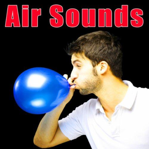 0.75 Hp Air (3/4 Hp Electric Air Compressor Releasing)