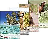 Brunnen 1047913 Zeichenblock (A3, 100 g/m², 20 Blatt) Tiermotive