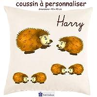 Texti-cadeaux, Coussin toucher très doux, motif Hérisson à personnaliser avec Prénom…