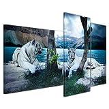 Wandbild - Tiger II - Bild auf Leinwand 130x80 cm 3 teilig - Leinwandbilder Bilder als Leinwanddruck Tierbild Wildtiere - Grosskatzen - Zwei weiße Tiger