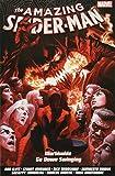 Amazing Spider-man: Worldwide Vol. 9