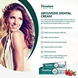 Himalaya Ayurvedic Dental Cream, 1er Pack (1 x 100 g) - 3