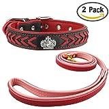 Newtensina Hundehalsband und Leine Set Nylonriemen gewebt Bling Halsband Leder Diamante Welpen Halsband mit Kontrastfarbe Leine für Hunde