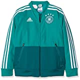 adidas Kinder DFB Präsentationsjacke, EQT Green/Real Teal/White, 140