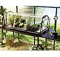 Bio Green Jumbo Propagator von Bio Green auf Du und dein Garten