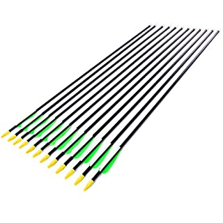Anladia 12er Fiberglaspfeil für Bogenschießen, 30 Zoll (79 cm) Bogenpfeile Pfeile 30 Zoll Fiberglaspfeil für Sportbogen, Recurvebogen, Langbogen