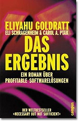 Das Ergebnis: Ein Roman über profitable Softwarelösungen