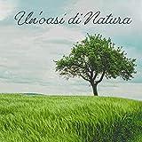 Un'oasi di Natura - Musica per Rilassarsi, Riposare e il De-stress, così come per la Spa, Massaggi, Bagni e Sonno