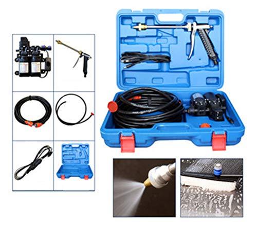 Voiture électrique Laveuse Laveur de Voiture Pompe Haute Pression 12V 80W électrique Laveuse Pompe de Lavage et Pistolet Tuyau Haute Pression Nettoyeur de Voiture électrique,Standard