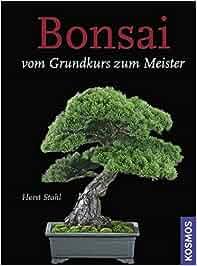 Bonsai – Vom Grundkurs zum Meister: Horst Stahl