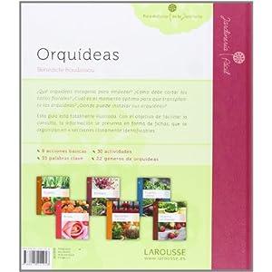 Orquídeas (Larousse - Libros Ilustrados/ Prácticos - Ocio Y Naturaleza - Jardinería - Colección Jardinería Fácil)