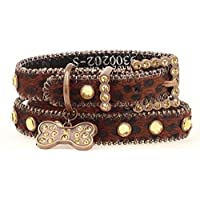 Blazin Roxx Dog Collar 9300202 3/4-in Pet Collar Brown with Dog Tag and Bling (Small)