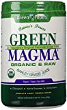 Green Magma Barley Juice Powder Large Tub 10.6oz [300g] by Green Foods