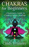 Chakras for Beginners: A Beginners Guide to Chakra Energy Healing (Reiki Healing , Chakra Healing Book 2) (English Edition)