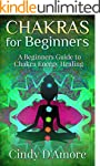 Chakras for Beginners: A Beginners Gu...