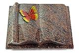 MEMORUM Grabmale Grabbuch, Grabplatte, Grabstein, Grabkissen, Urnengrabstein, Liegegrabstein Modell Antique 40 x 30 x 8-9 cm Paradiso-Granit, Poliert inkl. Gravur (Bronze-Color-Ornament Papillon 2)