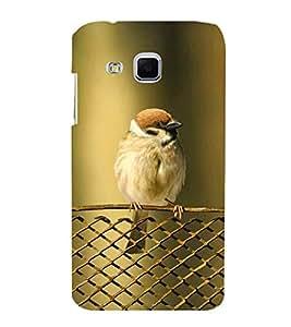 KOOKABURRA BIRD A BEAUTIFUL CREATION OF NATURE 3D Hard Polycarbonate Designer Back Case Cover for Samsung Galaxy J3 :: Samsung Galaxy J3 J300F