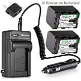 [Fully Decoded] Kastar BN-VG121 Battery (2-Pack) And Charger Kit For JVC Everio GZ-E Series GZ-EX Series GZ-HD Series GZ-HM3 Series And GZ-MG750 GZ-MS110 GZ-MS230 GZ-MS250 GZ-G3 GZ-GX1 GZ-GX8