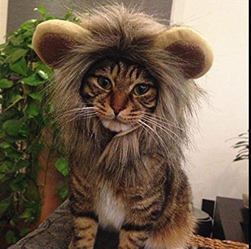 NxawRt Haustierkostüme Löwenmähne Katze Perücke Kleine Hunde Kostüm Synthetik Zubehör mit Ohren für Halloween & Weihnachten oder Cosplay Partys