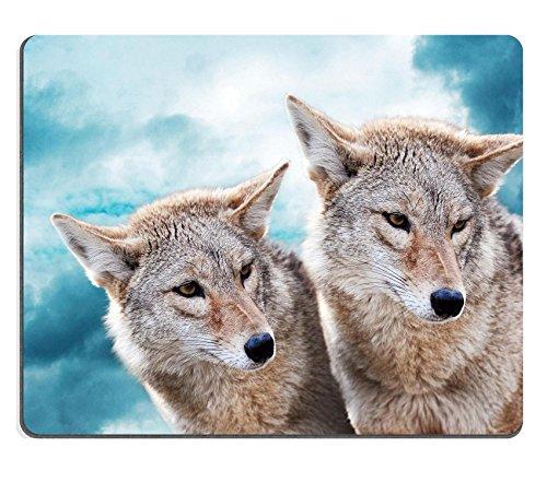 Liili mouse pad in gomma naturale Mousepad Coyote coppia contro il blu cielo invernale gli animali Image ID 18975098