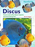 Discus (Aquaguide)