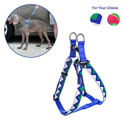 RCruning-EU Arnés para Perros Dog Harness