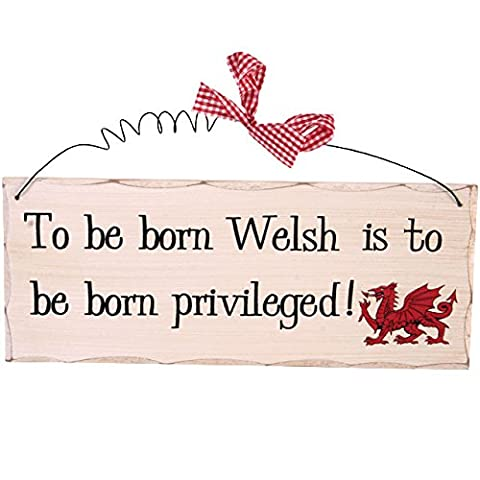 To be born welsh is to be born privileged wooden hanging wall plaque