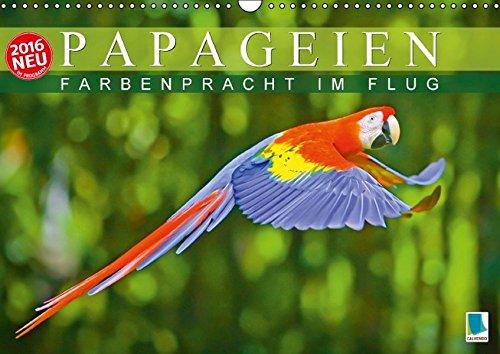Preisvergleich Produktbild Papageien: Farbenpracht im Flug (Wandkalender 2016 DIN A3 quer): Papageien: Bunte Exoten im Porträt (Monatskalender,  14 Seiten) (CALVENDO Tiere)