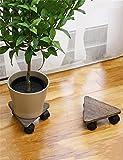 LLDHUAJIA LIANLIAN Entfernbarer dreieckiger hölzerner Flowerpot-Halter Miniblumen-Topf-Regal-Blumen-Zahnstange mit Riemenscheiben-Satz von 2 Pflanzenregal