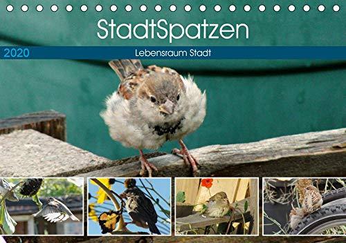 StadtSpatzen (Tischkalender 2020 DIN A5 quer): Berlin - Hauptstadt der Spatzen (Monatskalender, 14 Seiten ) (CALVENDO Tiere)
