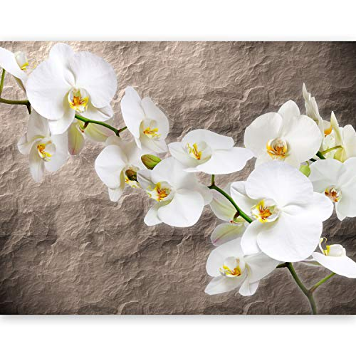 murando - Fototapete Blumen Orchidee 400x270 cm - Vlies Tapete - Moderne Wanddeko - Design Tapete - Wandtapete - Wand Dekoration - Steine 10080906-15 Orchidee-band