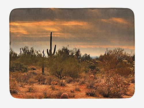 JIEKEIO Saguaro Bath Mat, Dramatic Shady Desert View with a Storm Cloud Approaching Western Arizona Photo, Plush Bathroom Decor Mat with Non Slip Backing, 23.6 W X 15.7 W Inches, Orange Green Western Non-slip