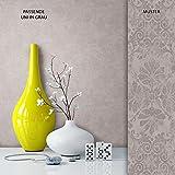 NEWROOM Tapete Grau Unifarbe Uni Vliestapete Vlies moderne Design Optik Tapete Einfarbig Unifarben inkl. Tapezier Ratgeber