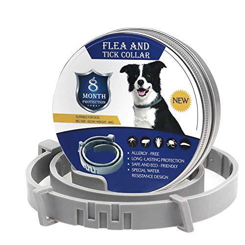 cinsey Hundehalsbänder für große Hunde für Katzen Hunde bis zu 8 Monaten Schutz Gesundheit