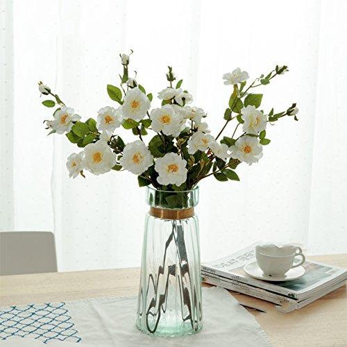 Nordic Living Room Transparent Glass Vase/personality Hydroponic Flower Vase Decoration-f