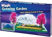 Jardín Creciente Cristal Magia Regalo