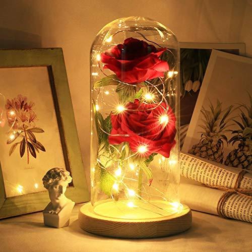 Decorazioni Luce Artificiale led natalizia