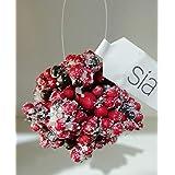 Sia Home Fashion - Juego de 4 Bolas Rojas con Nieve 060267
