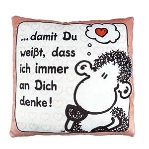 Die Geschenkewelt 49731 kleines Plüschkissen, Motiv Gemütlich, ca. 25 cm x 25 cm, Zier-Kissen