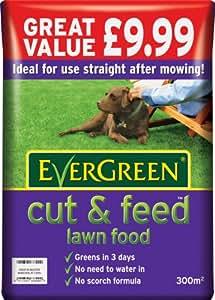 EverGreen Cut & Feed 300 sq m Lawn Food Bag