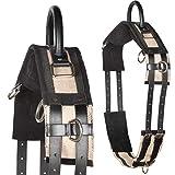 Heinick-Reitsport Qualitäts Longiergurt Canvas Schwarz 1 Griff ~ ideal für Kinder Größe Pony