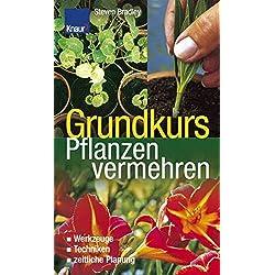 Grundkurs Pflanzen vermehren: Werkzeuge - Techniken - zeitliche Planung