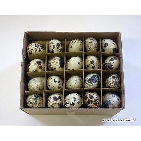 Uova di quaglia, 60 pezzi/scatola, colore ecru - Uova Di Quaglia